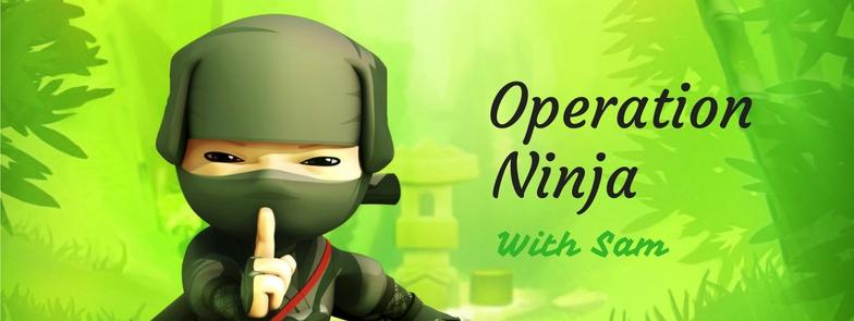 operation ninja