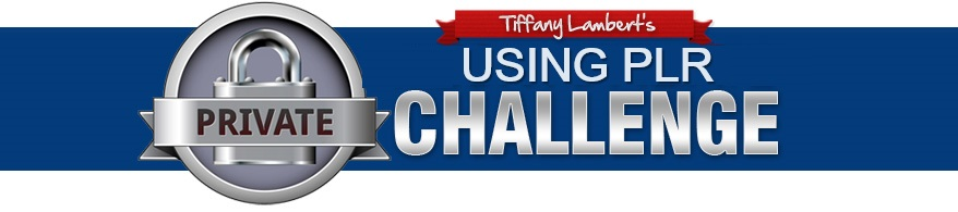 How to Use PLR Challenge